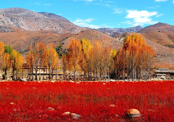 Daocheng Yading Nature Reserve 7 Days Tour