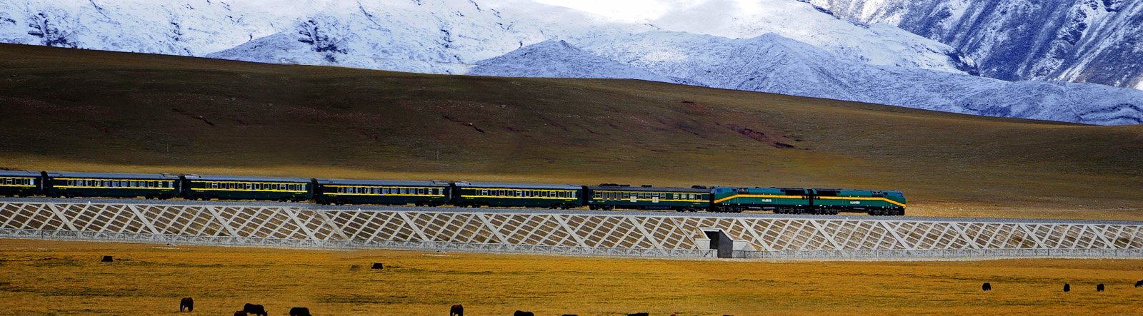 Tibet Group Tour,Tibet Railway Travel